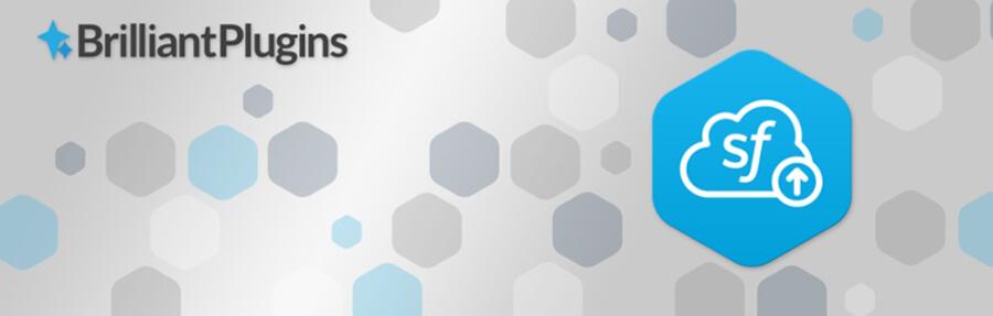 Плагин Brilliant Web to Leads Salesforce.